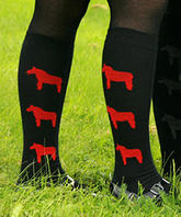 woolisar - Pålle knä röd